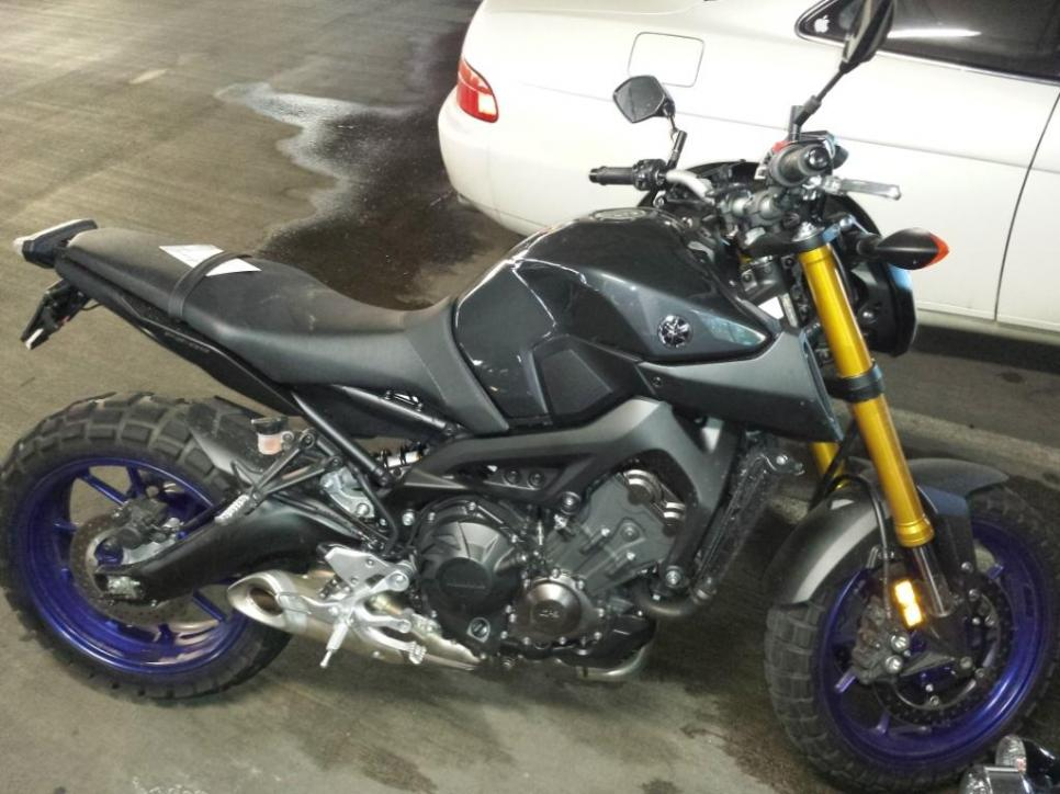 Trail Attacks On The Fz