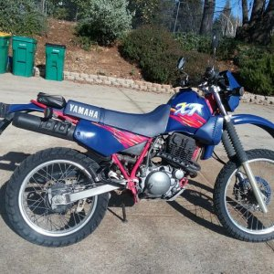 '94 Yamaha XT350- the latest addition, replacing my TLR200.  The TLR just wasn't practical in our new location due to the hills leading to our new hou
